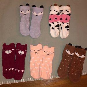 Animal sock bundle